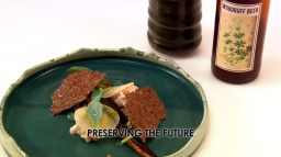 The Fish Dish- Preserving The Future