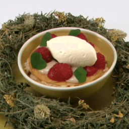 Tommy's Great British Menu | Day 4- Dessert